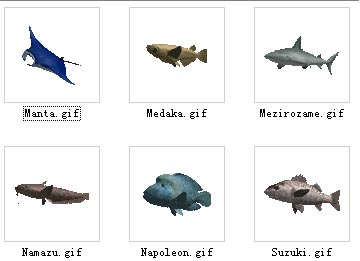 animals/fish  3-6