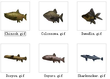 animals/fish  2-30