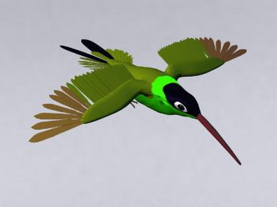 Animal Model: Hummingbird 3Ds Max Model