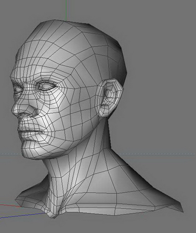Body Part 3Ds Max Model£º Head and Neck