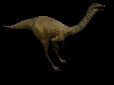 Animal Model: Longicollous Dinosaur 3dS Max Model