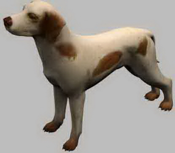 Hound dog puppy canine pet carnivorous 3D Models