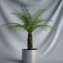 Plant Bonsai Series - 3D Model of coconut trees (including materials)