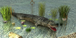 3D animals - crocodile