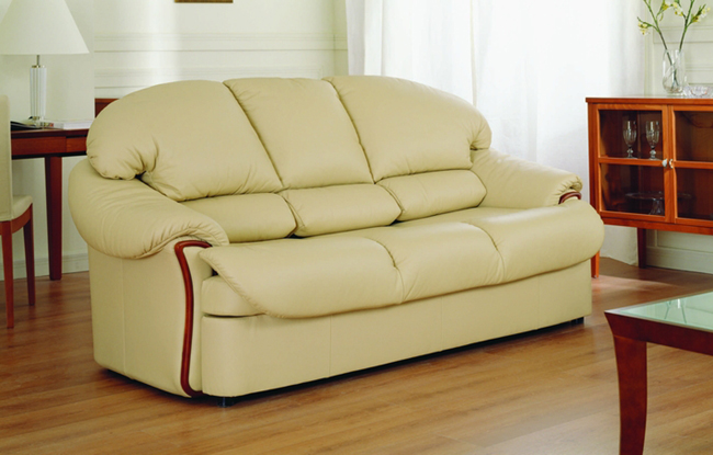 Light color coriaceous sofa. Many soft