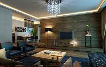 Modern dark business living room