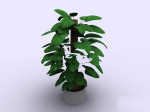 Home bonsai 3d models