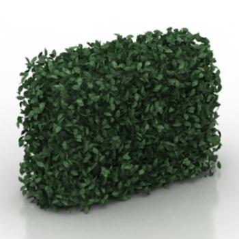 Plant Free 3D Models Download 3D Model Download,Free 3D Models Download
