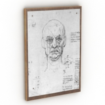 Men sketch hung like model