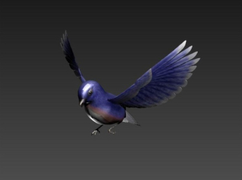 Purple bird 3D model