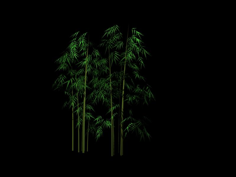 plant 001 - bamboo 3D Model Download,Free 3D Models Download