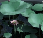 Lotus Leaf with lotus 3D model (with map)