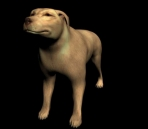 Yellow Dog Model (with map)